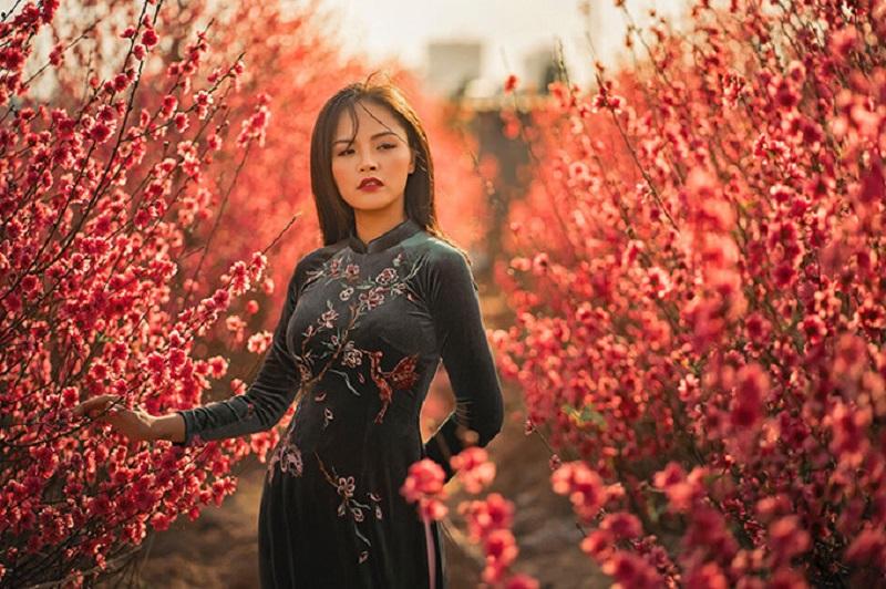 Vườn đào Nhật Tân - Địa điểm chụp ảnh tết đẹp ở Hà Nội