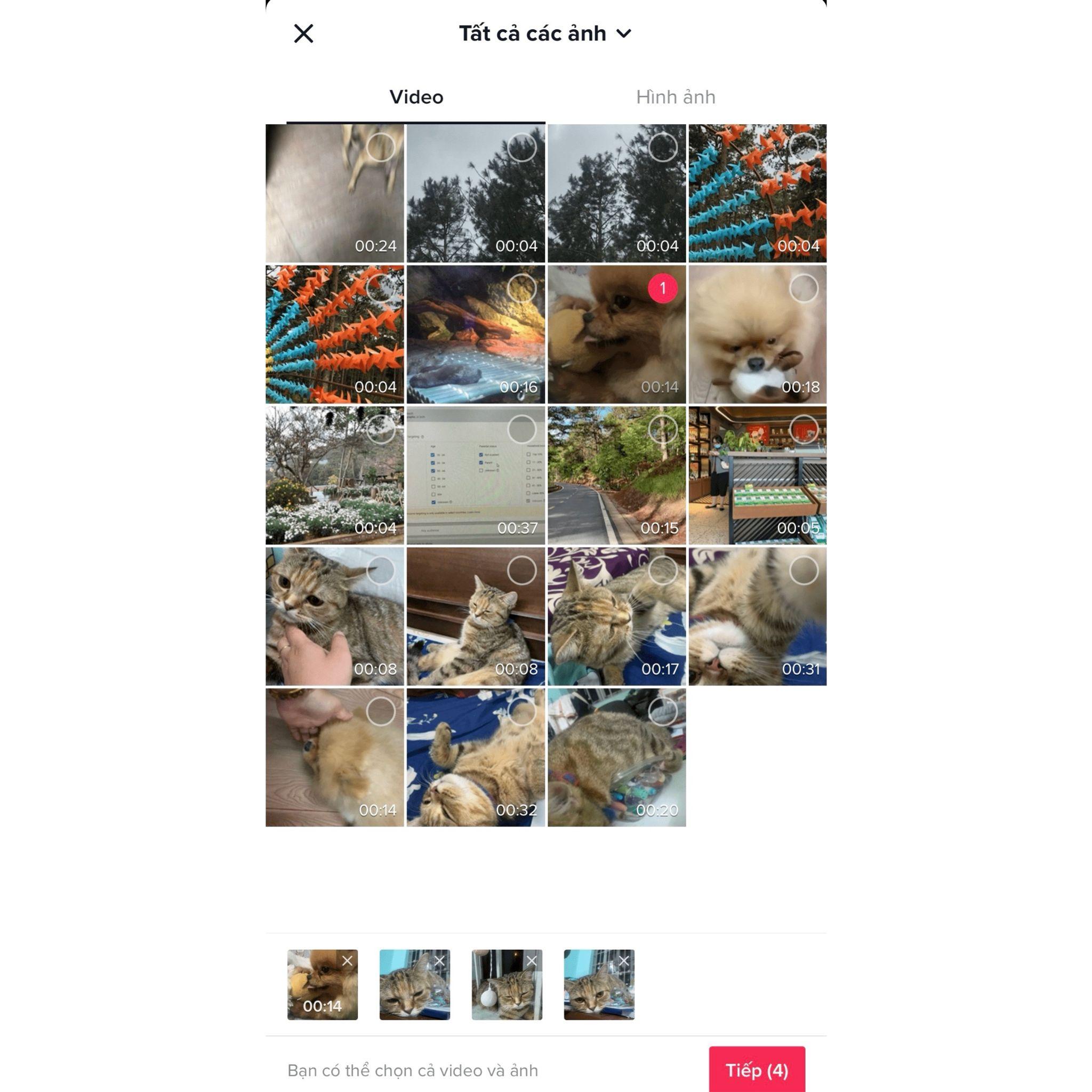 Cách ghép video ảnh trên tiktok trực tiếp trong ứng dụng