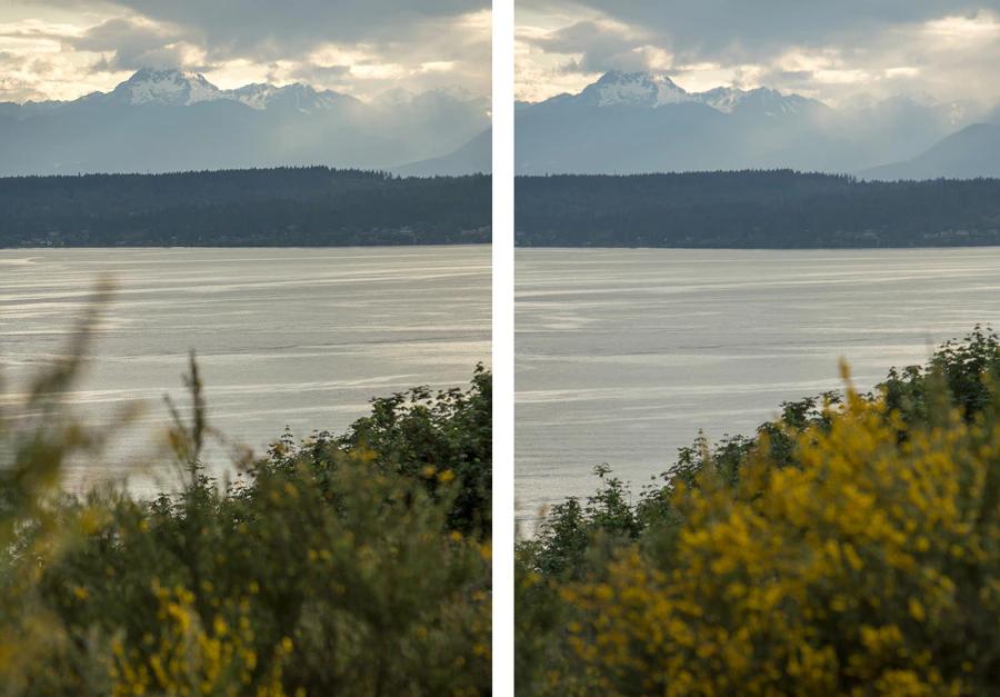 So sánh giữa 2 bức ảnh khi bị tác động bởi các yếu tố gây mất tập trung